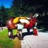 cms_1172089302_pferd2.jpg